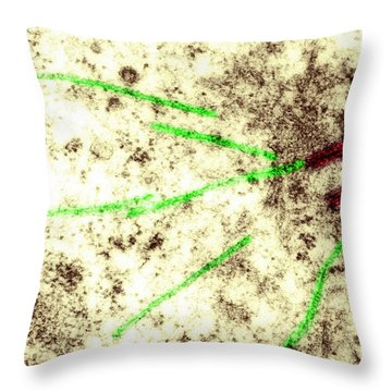 Centriole, Spindle Fibers, Chromosomes Throw Pillow