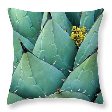 Century Plant And Tiny Blossom Throw Pillow