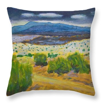 Cerrillos Spring Throw Pillow by John Hansen