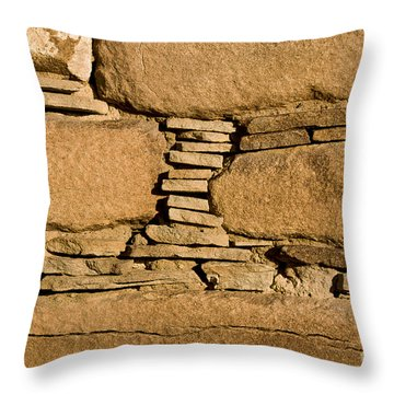 Chaco Bricks Throw Pillow by Steven Ralser