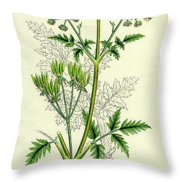 Wild Chervil Throw Pillows