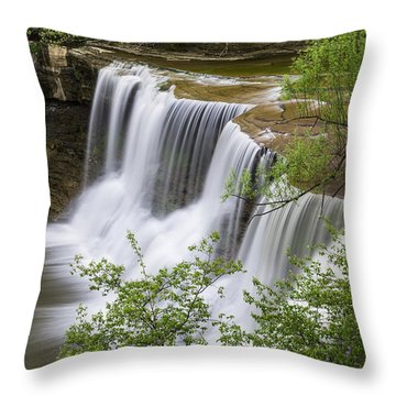 Chagrin Falls Throw Pillow