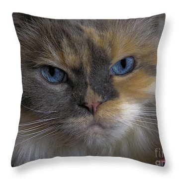 Chai Throw Pillow
