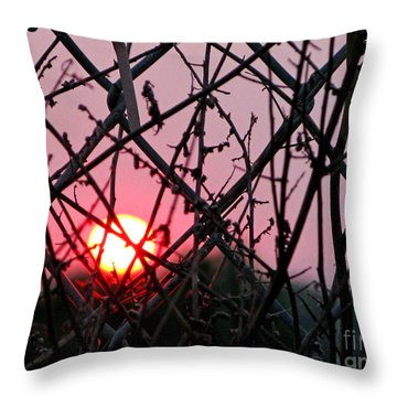 Throw Pillow featuring the photograph Chain Link Sunset by Jennie Breeze