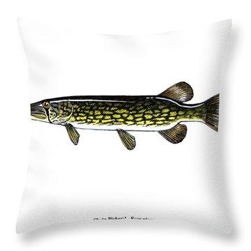 Chain Pickerel Throw Pillow