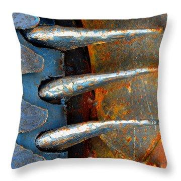 Chalkboard Throw Pillow by Lauren Leigh Hunter Fine Art Photography