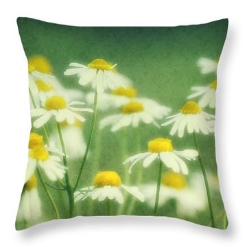 Chamomile Throw Pillow by Claudia Moeckel