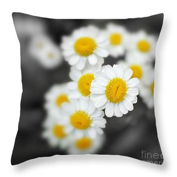 Chamomile Throw Pillow by Jane Rix