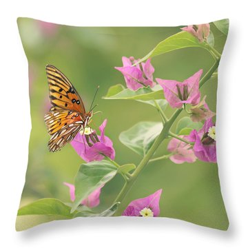 Chance Encounter Throw Pillow by Kim Hojnacki