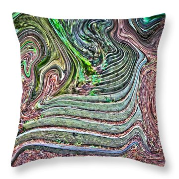 Chance Throw Pillow by Nick David