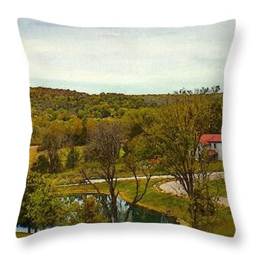 Chandler Hill Patio View Throw Pillow