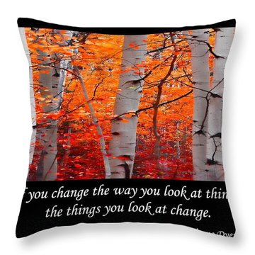 Change Throw Pillow by Don Schwartz