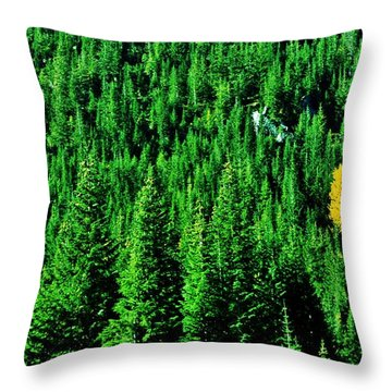 Change Is Good Throw Pillow by Benjamin Yeager