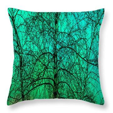 Change Of Seasons Throw Pillow by Bob Orsillo