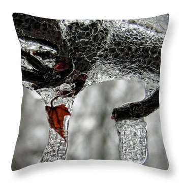 Change Of Seasons Throw Pillow by Lara Ellis