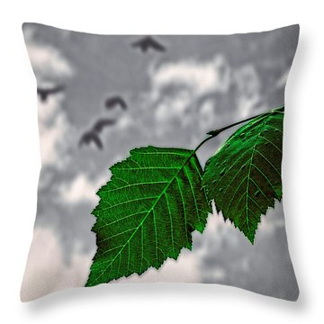 Changes Throw Pillow by Bob Orsillo