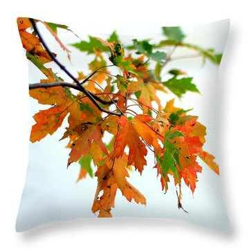 Throw Pillow featuring the photograph Changing Seasons by Viviana  Nadowski