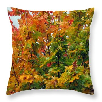 Throw Pillow featuring the photograph Changing Times by Tikvah's Hope