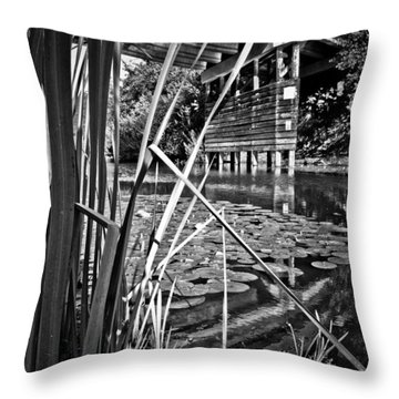 Channel Throw Pillow by Adria Trail
