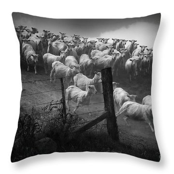 Throw Pillow featuring the photograph Charging The Gate by Nareeta Martin