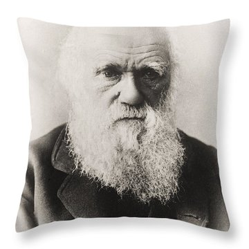 Creationism Throw Pillows