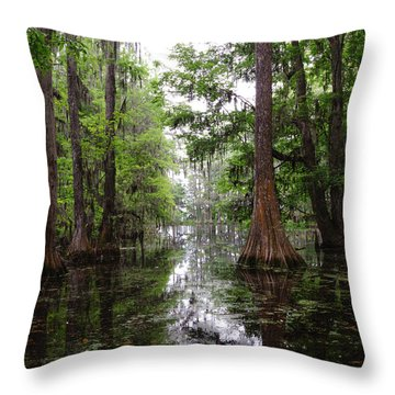 Charleston Swamp Throw Pillow