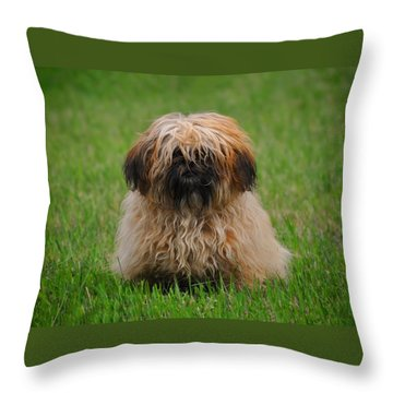 Charlie Throw Pillow by Greg Norrell