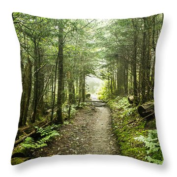 Throw Pillow featuring the photograph Charlies Bunion Bald Trail by Debbie Green