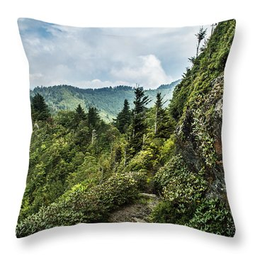 Throw Pillow featuring the photograph Charlies Bunion Trail by Debbie Green