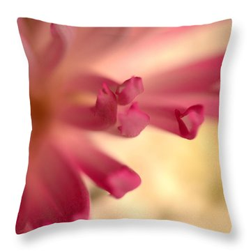 Charm Catcher Throw Pillow
