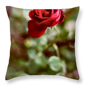 Charming Life Throw Pillow