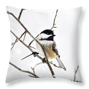 Charming Winter Chickadee Throw Pillow by Christina Rollo