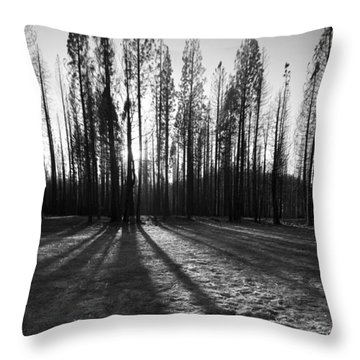 Charred Silence - Yosemite Rm Fire 2013 Throw Pillow