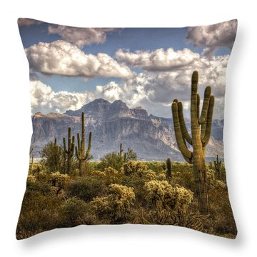 Chasing Clouds Two  Throw Pillow