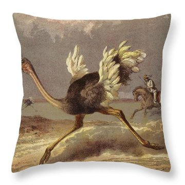 Chasing The Ostrich Throw Pillow by English School