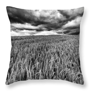 Chasing The Storm Throw Pillow by John Farnan