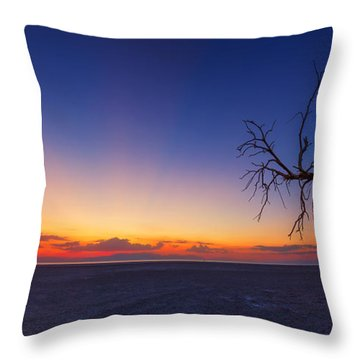 Chasing The Sun Throw Pillow by Tassanee Angiolillo