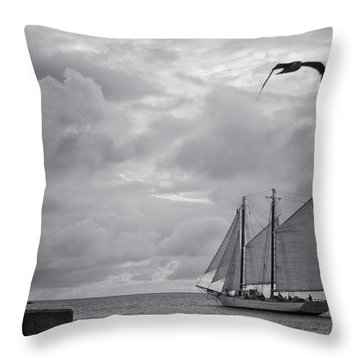 Chasing The Wind IIi Throw Pillow