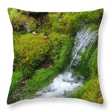 Throw Pillow featuring the photograph Chasing Waterfalls by Marilyn Wilson
