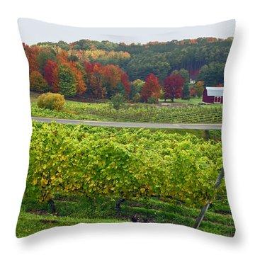 Chateau Chantal In Autumn 2014 Throw Pillow
