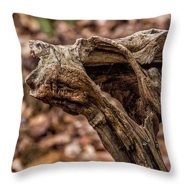 Chattahoochee National Forest Throw Pillow