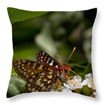 Checkerspot Sipping Nectar Throw Pillow
