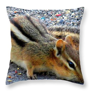 Cheeky Chipmunk Throw Pillow by Danielle  Parent