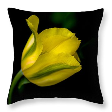 Cheerful Thoughts And Sunshine Throw Pillow