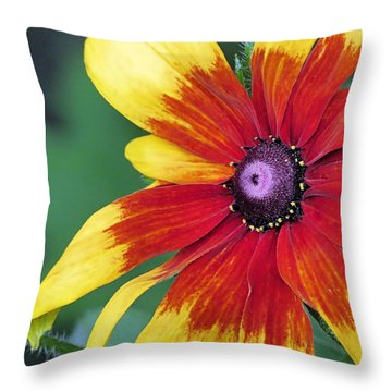 Cheery Blanket Flower Throw Pillow by Janice Drew