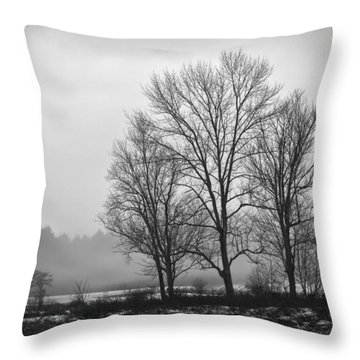 Cheese House Road Trees Throw Pillow
