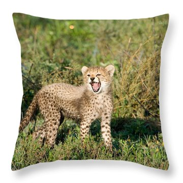 Cheetah Cub Acinonyx Jubatus Yawning Throw Pillow