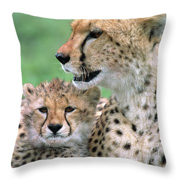 Throw Pillow featuring the photograph Cheetah Mother And Cub by Yva Momatiuk John Eastcott