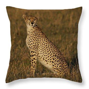 Cheetah On Savanna Masai Mara Kenya Throw Pillow