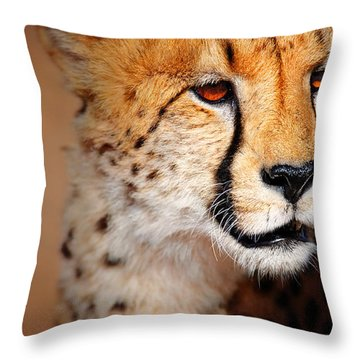 Cheetah Portrait Throw Pillow by Johan Swanepoel